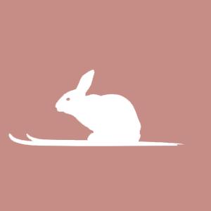 Produkty z królika